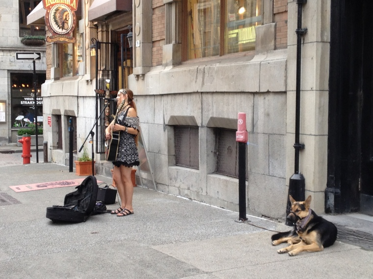 Montreal, city streets, street artist, singer, German Shepard, street dog, dog, canine, city, Quebec, Canada