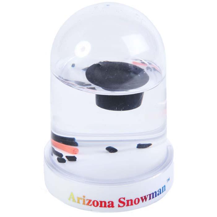 Arizona desert Snowman snowglobe