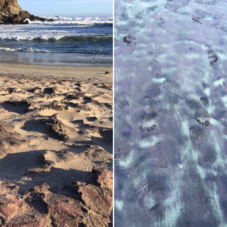 purple sand beach in Big Sur